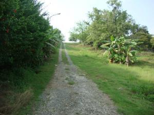 Terreno En Ventaen Arraijan, Vista Alegre, Panama, PA RAH: 15-995