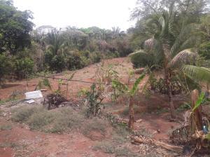 Terreno En Ventaen La Chorrera, Chorrera, Panama, PA RAH: 16-1635