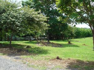 Terreno En Ventaen Chame, Coronado, Panama, PA RAH: 16-2124