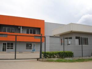 Galera En Alquileren Panama, Tocumen, Panama, PA RAH: 16-3210