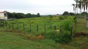 Terreno En Ventaen Las Tablas, Las Tablas, Panama, PA RAH: 16-3259