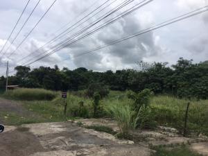 Terreno En Alquileren La Chorrera, Chorrera, Panama, PA RAH: 16-3458