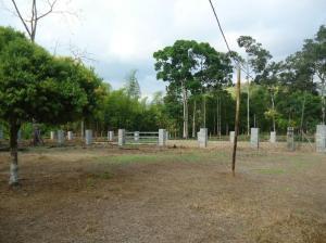 Terreno En Ventaen Chiriqui, Chiriqui, Panama, PA RAH: 16-3970