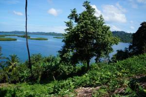 Terreno En Ventaen Bocas Del Toro, Bocas Del Toro, Panama, PA RAH: 16-4412