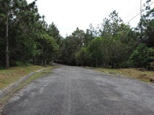 Terreno En Ventaen Panama, Tocumen, Panama, PA RAH: 16-5183