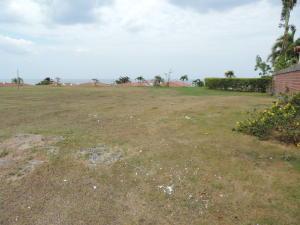 Terreno En Ventaen San Carlos, San Carlos, Panama, PA RAH: 17-2161