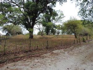 Terreno En Ventaen San Carlos, San Carlos, Panama, PA RAH: 17-2165