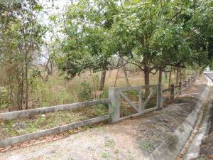Terreno En Ventaen San Carlos, San Carlos, Panama, PA RAH: 17-2164