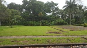Terreno En Ventaen Colón, Colon, Panama, PA RAH: 17-3174