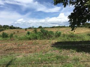 Terreno En Ventaen San Carlos, San Carlos, Panama, PA RAH: 17-3615