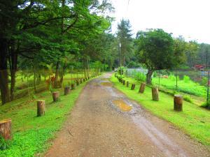 Terreno En Ventaen Pacora, Cerro Azul, Panama, PA RAH: 17-4136