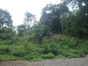 Terreno En Alquileren Colón, Colon, Panama, PA RAH: 17-4237