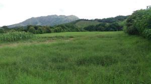 Terreno En Ventaen Chame, Punta Chame, Panama, PA RAH: 17-4620