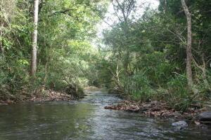 Terreno En Ventaen San Carlos, San Carlos, Panama, PA RAH: 17-4767