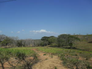 Terreno En Ventaen Chitré, Chitré, Panama, PA RAH: 17-5525