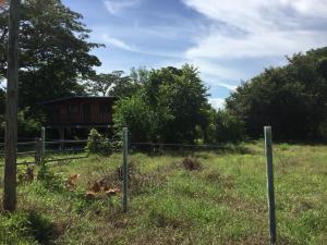 Terreno En Ventaen Cocle, Cocle, Panama, PA RAH: 17-6432