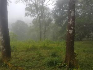 Terreno En Ventaen Pacora, Cerro Azul, Panama, PA RAH: 17-6968