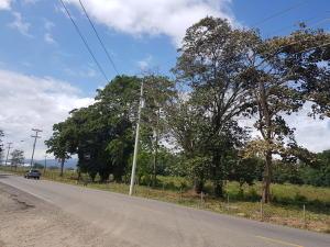 Terreno En Ventaen Panama, Tocumen, Panama, PA RAH: 18-1410