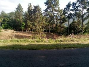 Terreno En Ventaen Pacora, Cerro Azul, Panama, PA RAH: 18-1665