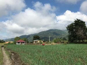 Terreno En Ventaen Chiriqui, Chiriqui, Panama, PA RAH: 18-1681