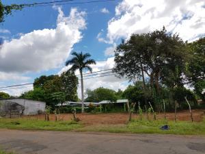 Terreno En Alquileren David, David, Panama, PA RAH: 18-2022
