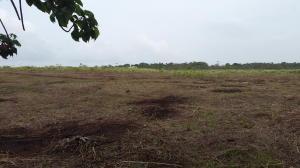 Terreno En Ventaen Arraijan, Vista Alegre, Panama, PA RAH: 18-2042