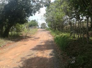 Terreno En Ventaen La Chorrera, Chorrera, Panama, PA RAH: 18-2148