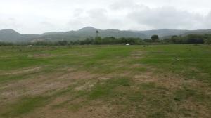 Terreno En Ventaen Penonome, El Coco, Panama, PA RAH: 18-2207
