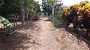 Terreno En Ventaen Chame, Punta Chame, Panama, PA RAH: 18-2296