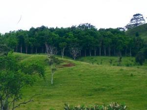 Terreno En Ventaen Panama Oeste, Capira, Panama, PA RAH: 18-2318