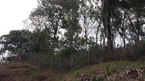 Terreno En Ventaen Panama, Las Cumbres, Panama, PA RAH: 18-2700