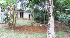 Terreno En Ventaen La Chorrera, Chorrera, Panama, PA RAH: 18-3469