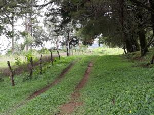 Terreno En Ventaen Boquete, Jaramillo, Panama, PA RAH: 18-3505