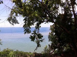 Terreno En Ventaen Baru, Limones, Panama, PA RAH: 18-5676