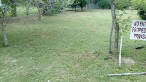 Terreno En Ventaen San Carlos, San Carlos, Panama, PA RAH: 18-3825