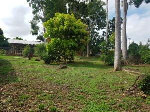 Terreno En Ventaen Las Tablas, Las Tablas, Panama, PA RAH: 18-4085