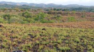 Terreno En Ventaen San Carlos, San Carlos, Panama, PA RAH: 18-4218