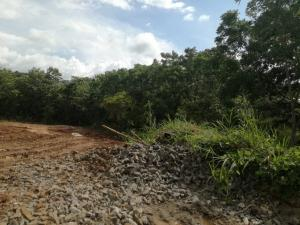 Terreno En Alquileren La Chorrera, Chorrera, Panama, PA RAH: 18-4312