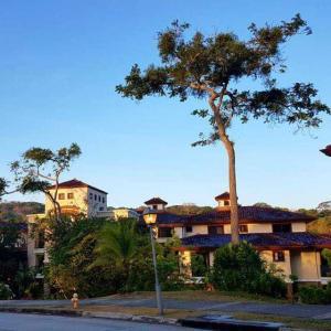 Apartamento En Ventaen Panama, Clayton, Panama, PA RAH: 18-4406