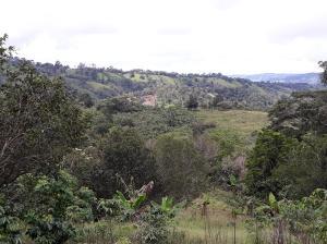 Terreno En Ventaen Tierras Altas, Nueva California, Panama, PA RAH: 18-4592