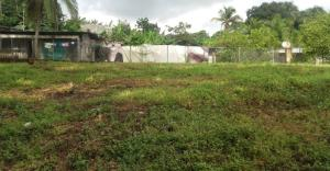 Terreno En Ventaen Panama, Tocumen, Panama, PA RAH: 18-4682