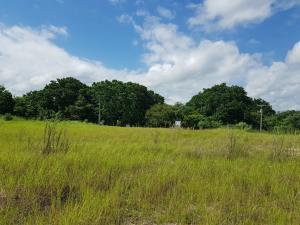 Terreno En Ventaen Panama, Tocumen, Panama, PA RAH: 18-4801