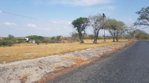 Terreno En Ventaen Chame, Coronado, Panama, PA RAH: 18-4913