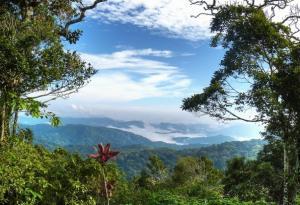 Terreno En Ventaen Pacora, Cerro Azul, Panama, PA RAH: 17-2699