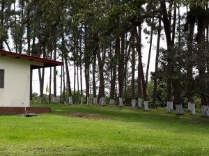Terreno En Ventaen Chiriqui, Chiriqui, Panama, PA RAH: 18-5293