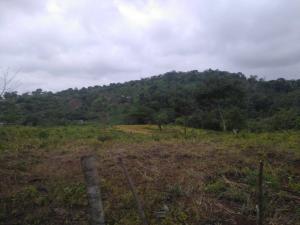 Terreno En Ventaen La Chorrera, Chorrera, Panama, PA RAH: 18-6227