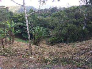Terreno En Ventaen Chame, Punta Chame, Panama, PA RAH: 18-6244