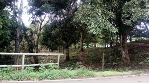 Terreno En Ventaen Panama, Las Mananitas, Panama, PA RAH: 18-6254