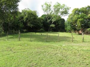 Terreno En Alquileren Chame, Gorgona, Panama, PA RAH: 18-6400