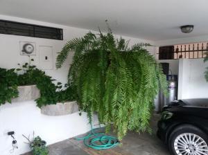 Casa En Ventaen Panama, Las Loma, Panama, PA RAH: 18-6669